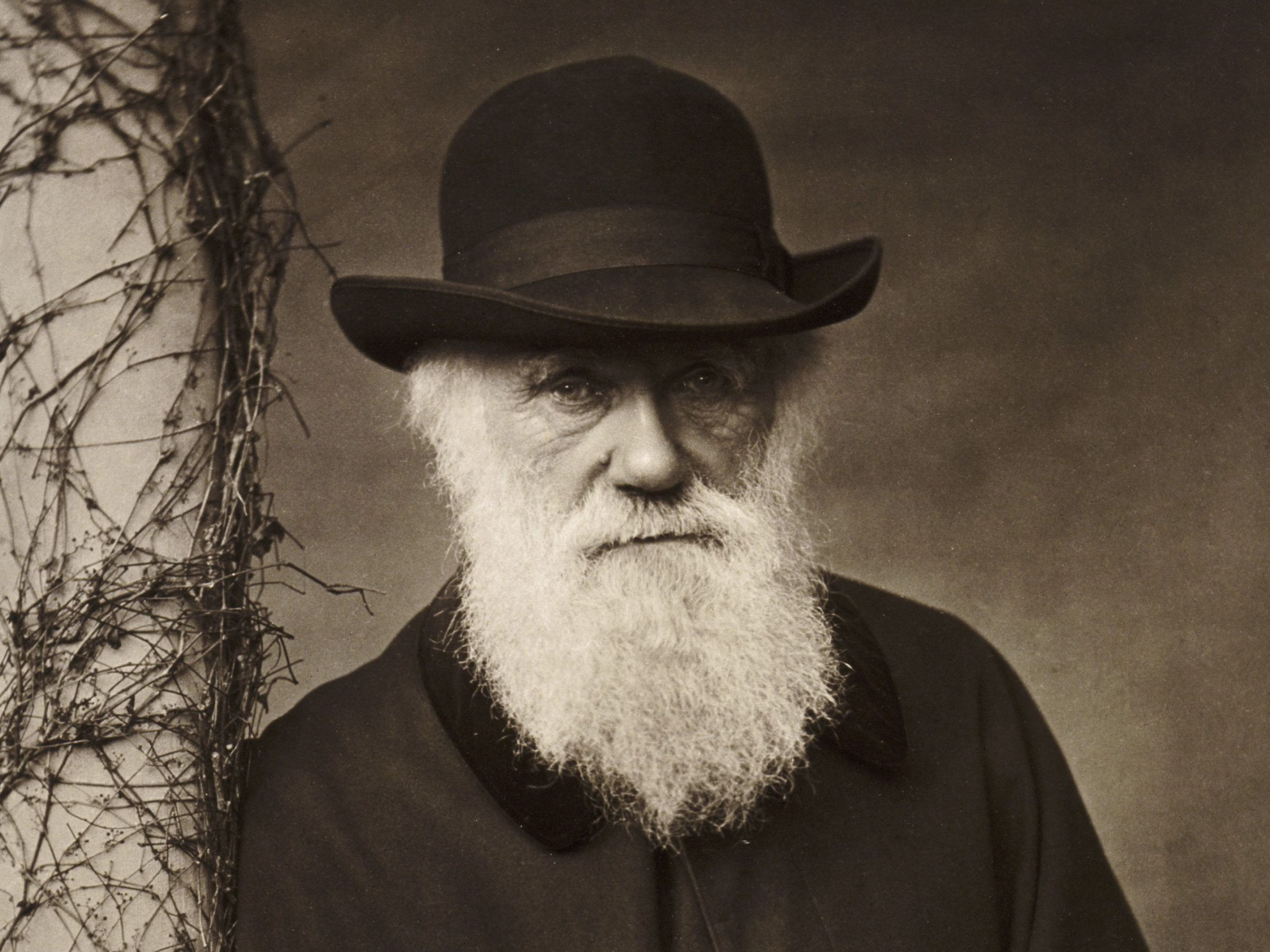 Older Charles Darwin wearing a hat